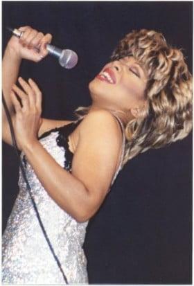 Tribute Tina Turner