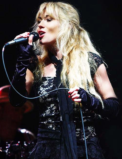 Tribute to Fleetwood Mac Stevie Nicks
